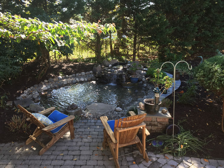 backyard pond installer in annapolis, md